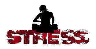Apprendre à gérer son stress avec Exego